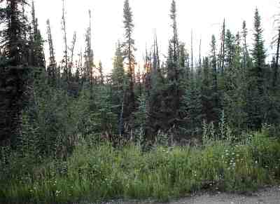 North Pole Residential Lots & Land For Sale: 3394 Her Street