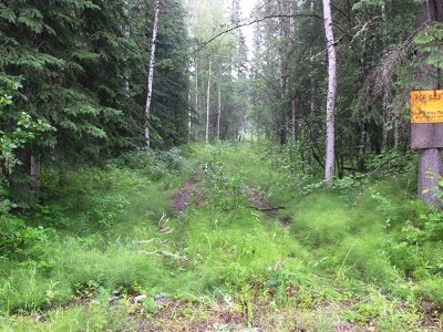 Residential Lots & Land Sold: 6986 Old Richardson Highway