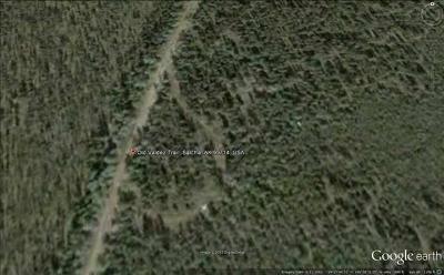 Salcha Residential Lots & Land For Sale: Old Valdez Trail