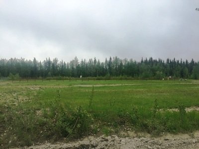 North Pole Residential Lots & Land For Sale: 3478 Silverleaf Avenue