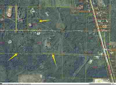 Salcha Residential Lots & Land For Sale: Nhn Country Road