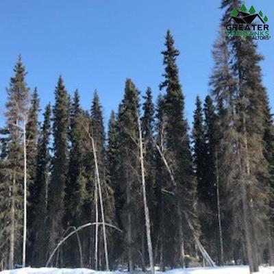 Fairbanks Residential Lots & Land For Sale: 7067 Sweren Loop