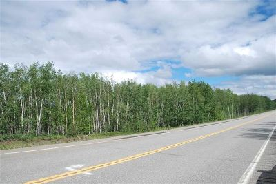 Residential Lots & Land For Sale: Mile 309 Parks Highway