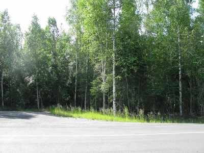 North Pole Residential Lots & Land For Sale: 2881 Buzby Road