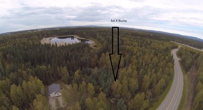 North Pole Residential Lots & Land For Sale: 2875 Buzby Road
