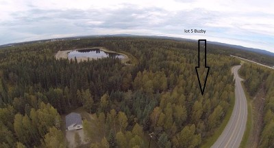 North Pole Residential Lots & Land For Sale: 2859 Buzby Road