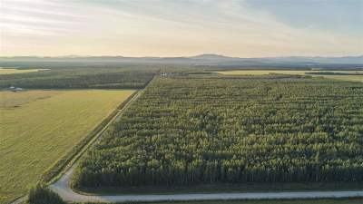 Fairbanks North Star Borough, Southeast Fairbanks Census Area Residential Lots & Land For Sale: Nhn Chase Road