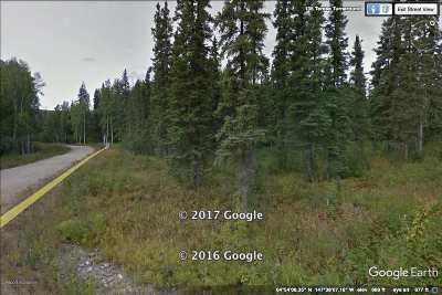 Fairbanks Residential Lots & Land For Sale: L9b1 Nhn Teresa Turnaround/McGrath