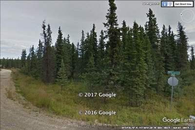 Fairbanks Residential Lots & Land For Sale: L10b2 Nhn Teresa Turnaround/McGrath