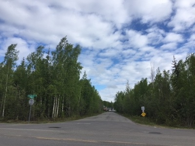 Residential Lots & Land For Sale: Nhn Chena Small Tracts Road