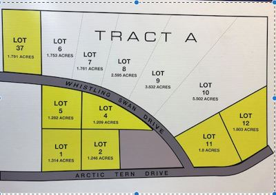 Residential Lots & Land For Sale: Nhn Arctic Tern Drive
