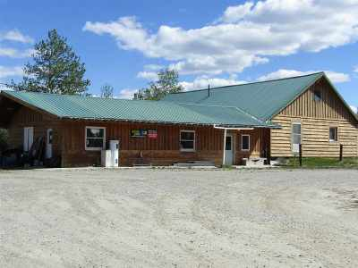Delta Junction Single Family Home For Sale: 2880 Richardson Highway