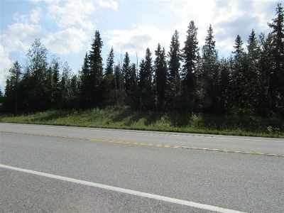Delta Junction Residential Lots & Land For Sale: L2-3 Richardson Highway