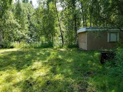 Fairbanks Single Family Home For Sale: 2486 Elliott Highway