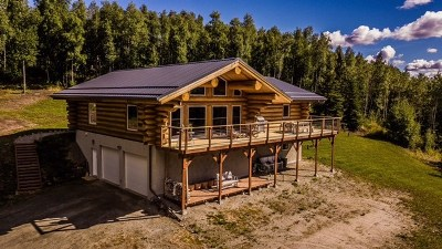 Fairbanks Single Family Home For Sale: 1402 Richard Berry Drive