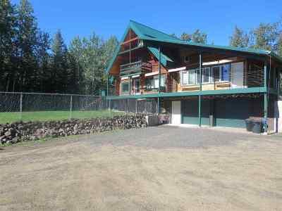 Fairbanks Single Family Home For Sale: 653 Love Road