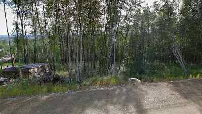 Fairbanks Residential Lots & Land For Sale: Nhn Donna Drive