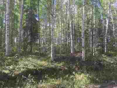 Residential Lots & Land For Sale: Nhn Nhn Nenana