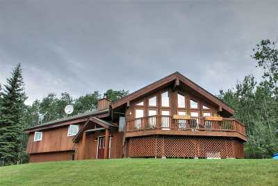 Fairbanks Single Family Home For Sale: 1484 Ithaca Road