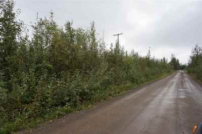 North Pole Residential Lots & Land For Sale: Nhn Tootie Street