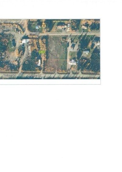 North Pole Residential Lots & Land For Sale: 1098 Holmes Road