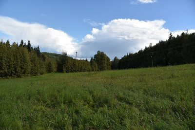 Fairbanks Residential Lots & Land For Sale: Nhn Old Chena Hotsprings Road