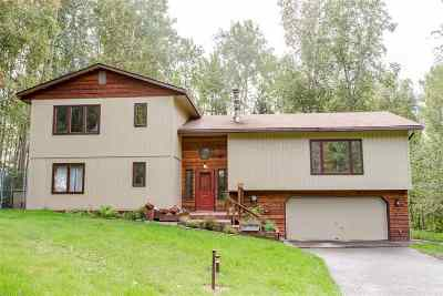 Fairbanks Single Family Home For Sale: 501 Valley View