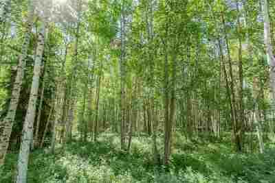Fairbanks Residential Lots & Land For Sale: Nhn Snowy Owl Lane