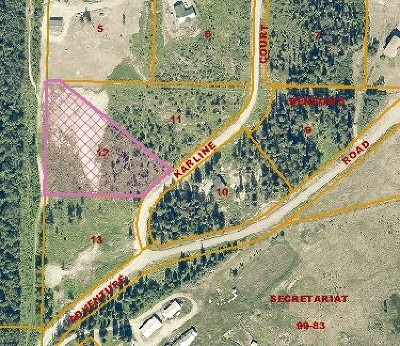 Residential Lots & Land For Sale: L12 Karline Court