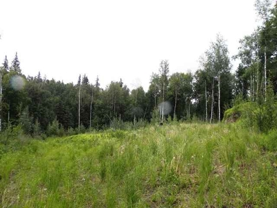 Fairbanks Residential Lots & Land For Sale: 3155 Hillary Avenue