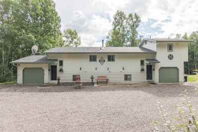 Fairbanks Single Family Home For Sale: 399 A Peregrine Drive