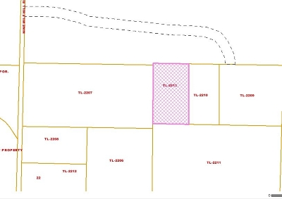Fairbanks Residential Lots & Land For Sale: Nhn 9 Mile Hill Road