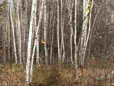North Pole AK Residential Lots & Land For Sale: $89,000