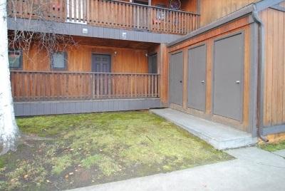 Fairbanks Rental For Rent: 225 Woodridge Park