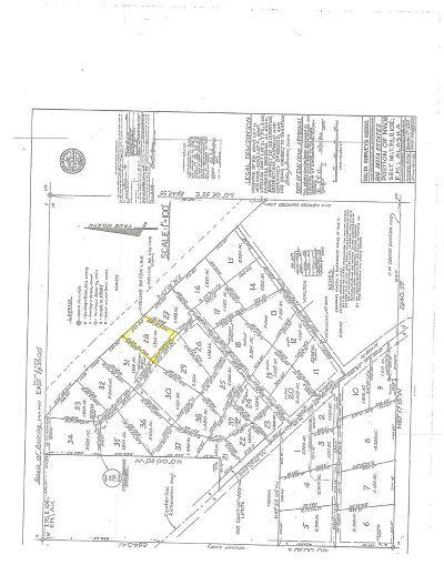 Delta Junction Residential Lots & Land For Sale: L28 Terri Lane