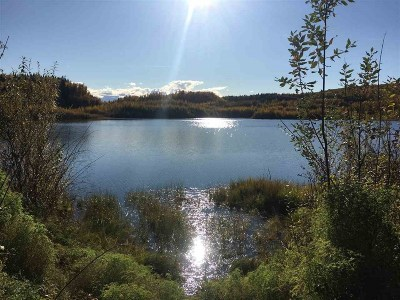 Fairbanks Residential Lots & Land For Sale: Nhn Parks Highway