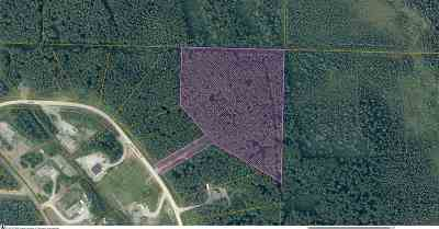 Fairbanks Residential Lots & Land For Sale: Nhn Birch Knoll Road