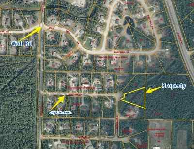 North Pole Residential Lots & Land For Sale: 2420 Payton Avenue