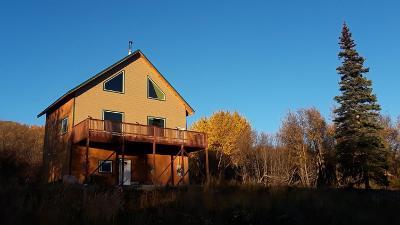 Single Family Home For Sale: 45877 W Glenn Highway