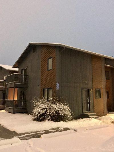 Fairbanks Condo/Townhouse For Sale: 1028 Dogwood Street