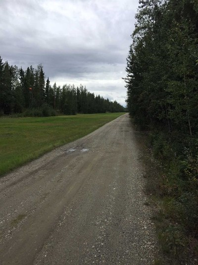 North Pole Residential Lots & Land For Sale: Nhn Porter Avenue
