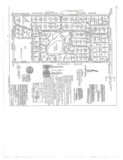 Delta Junction Residential Lots & Land For Sale: L10 Triple H Road