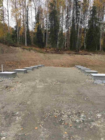 Fairbanks Residential Lots & Land For Sale: 1311 Whistling Swan Drive