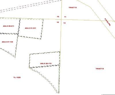 Fairbanks Residential Lots & Land For Sale: Nhn Himilaya Road