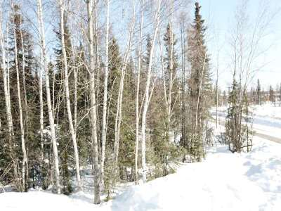 North Pole Residential Lots & Land For Sale: Nhn Copper Street