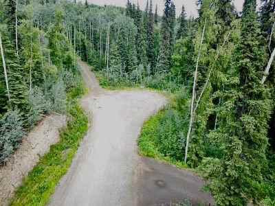 Fairbanks AK Residential Lots & Land For Sale: $53,000