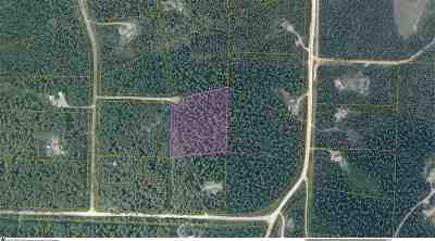 Fairbanks Residential Lots & Land For Sale: Nhn Ray Court