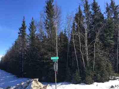 Delta Junction Residential Lots & Land For Sale: Nhn Spruce Street
