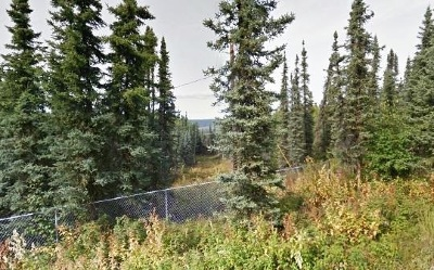 Fairbanks Residential Lots & Land For Sale: Nhn Whistling Swan Drive