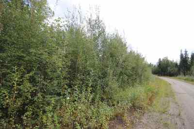 Fairbanks Residential Lots & Land For Sale: 610 Hurricane Drive
